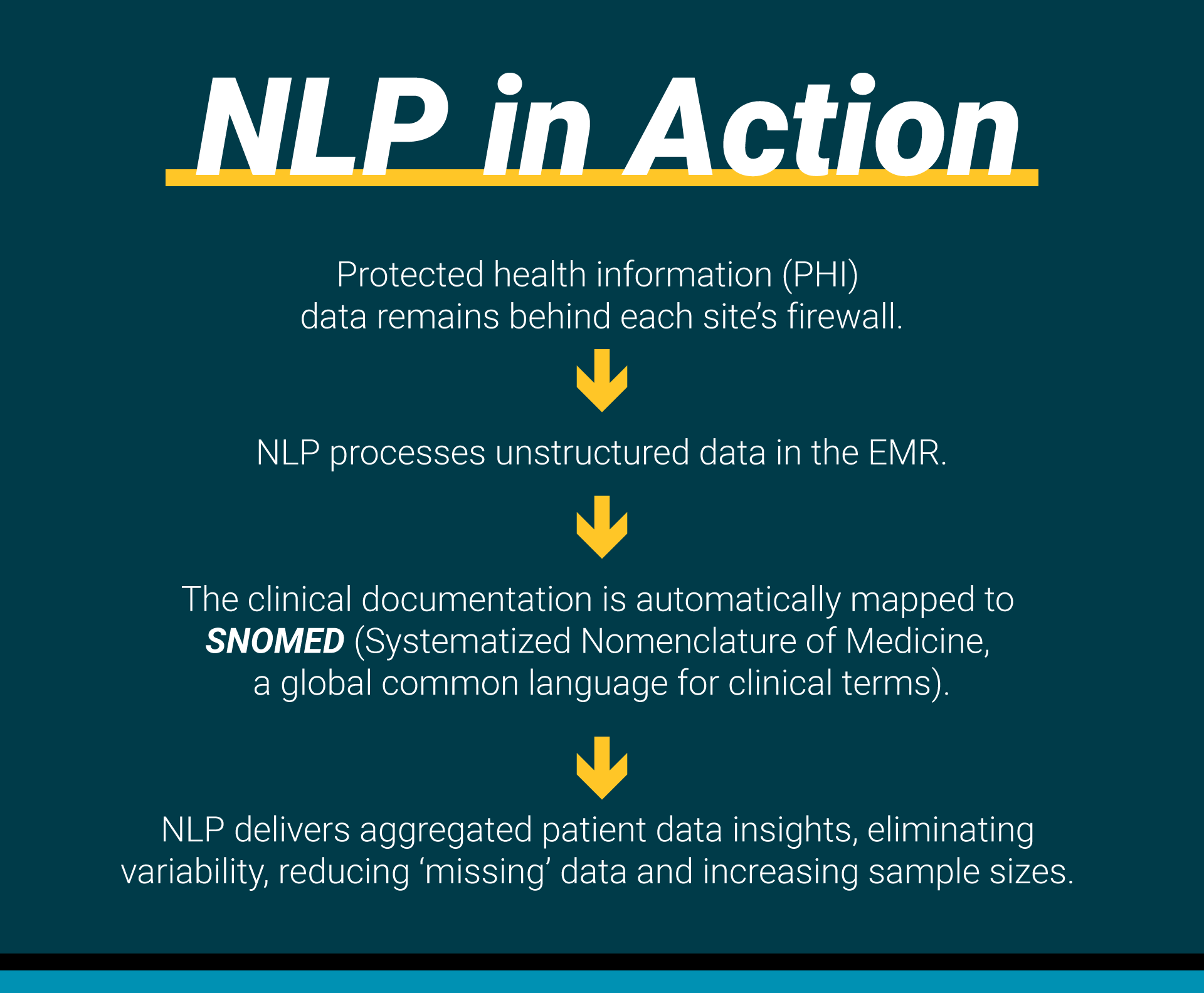 NLPinAction_graphic_v2.png#asset:4792