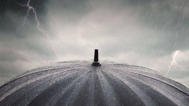 shelter-from-the-storm.jpg#asset:1209
